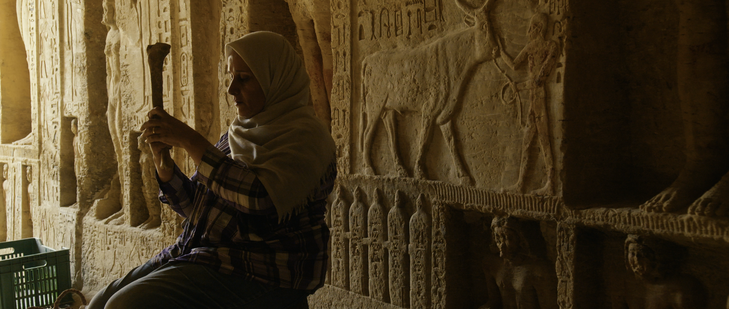 Sharing 'Secrets of the Saqqara Tomb' With Members Around the World